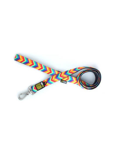 Max & Molly Summer Time Dog Short Leash | Perromart Online Pet Store Singapore