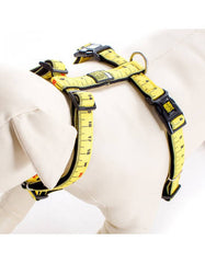 Max & Molly Ruler Harness | Perromart