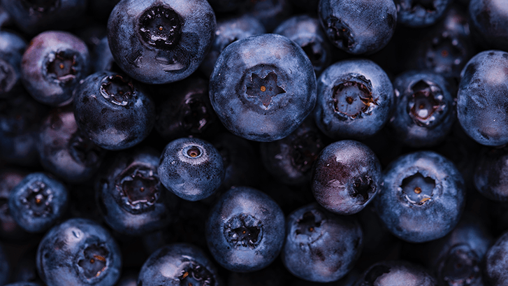Prevent DNA Damage by Adding Blueberries to Your Diet