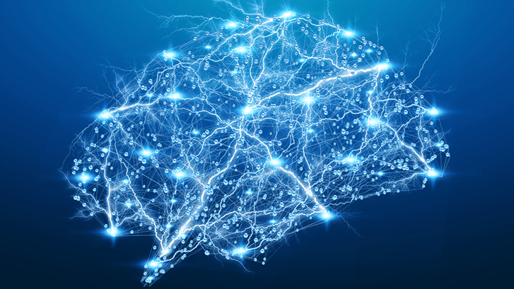 Pulse 55: Watching Neural Activity Unfold in the Brain