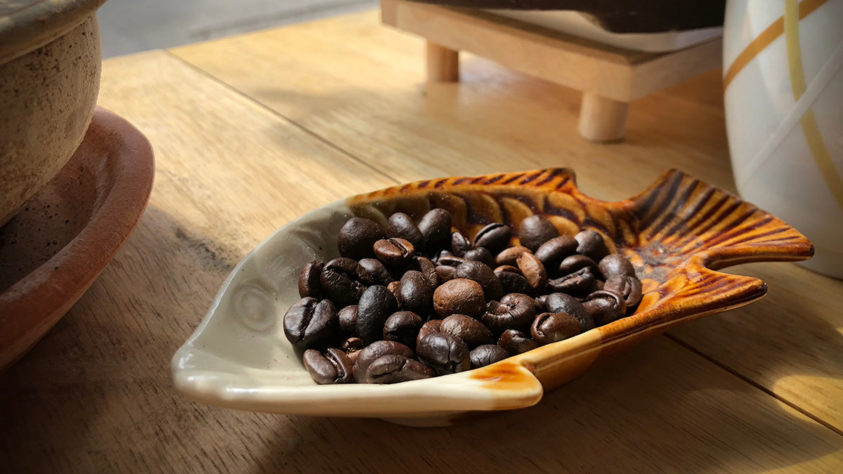 Coffee Beans in Fish Try