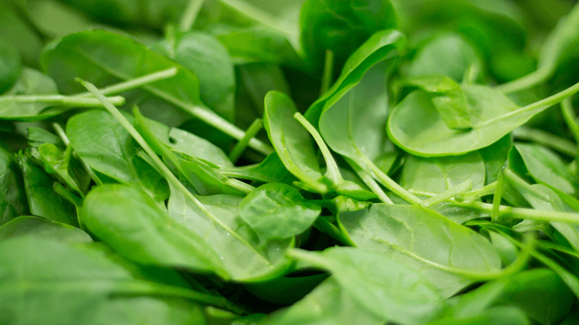 Spinach Coenzyme Q10