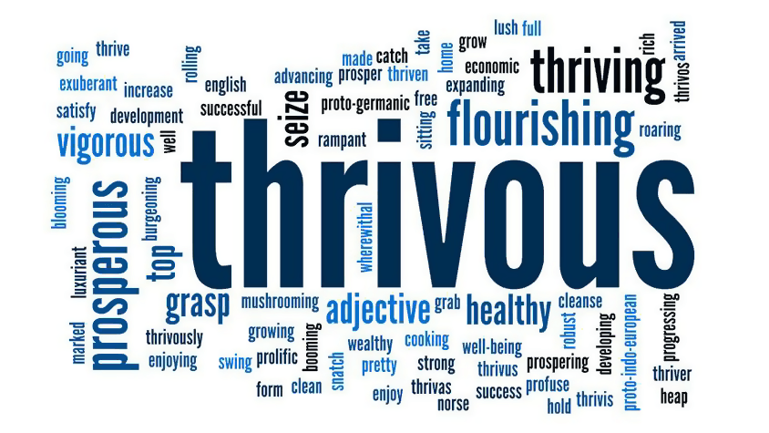 Definition Of Thrivous, Word Cloud