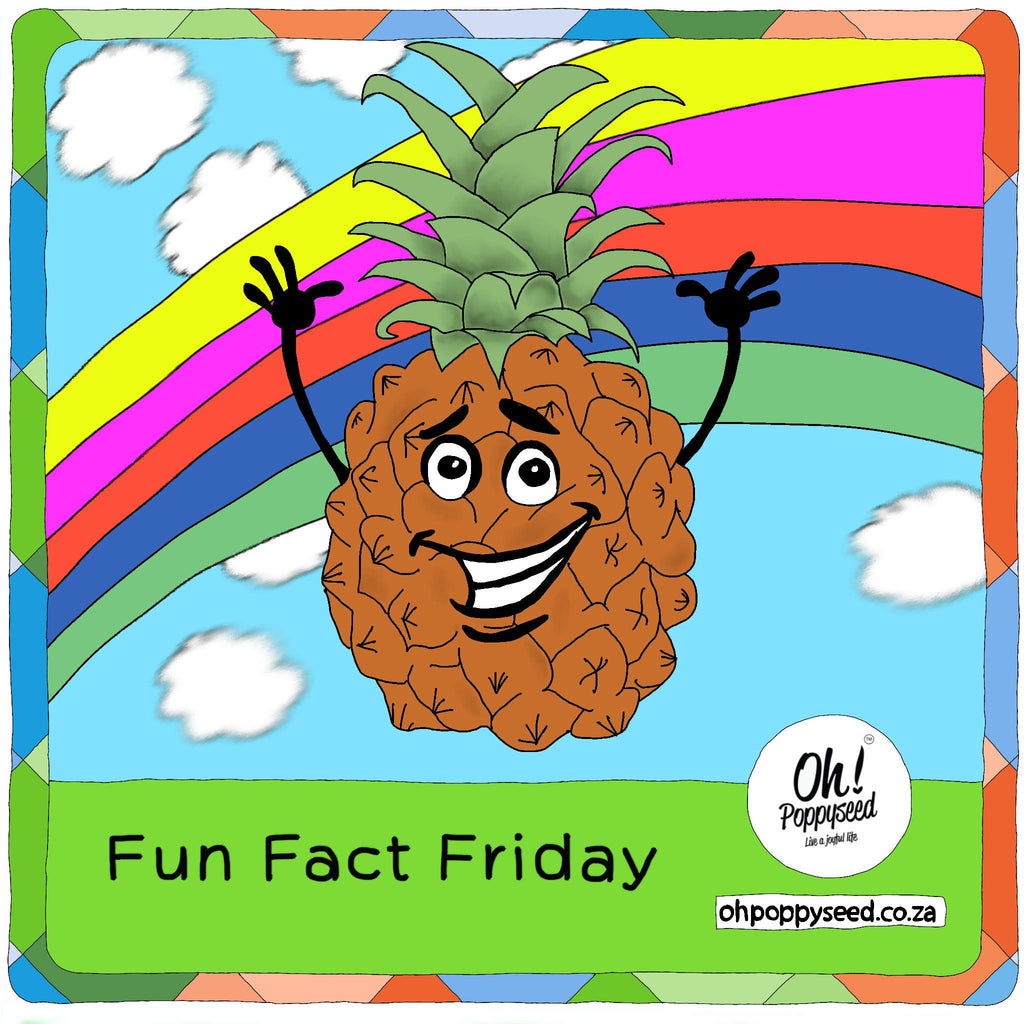 Fun Fact Friday - Pineapples