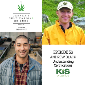 Episode 56: Understanding Certifications with Andrew Black