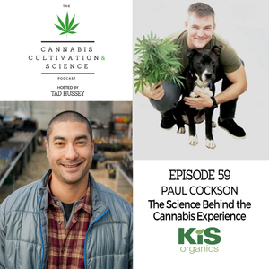 Episode 59: The Science Behind the Cannabis Experience with Paul Cockson