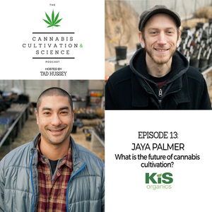 Episode 13: The Future of Cannabis Cultivation with Jaya Palmer