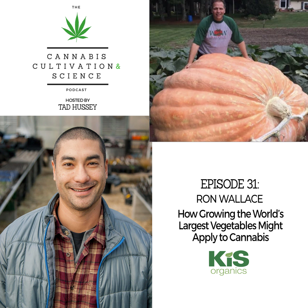 Episode 31: How Growing the World's Largest Vegetable Might Apply to Cannabis with Ron Wallace
