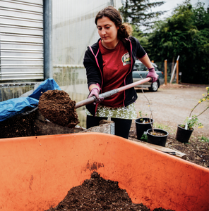 7 Important Things When Building a Living Soil