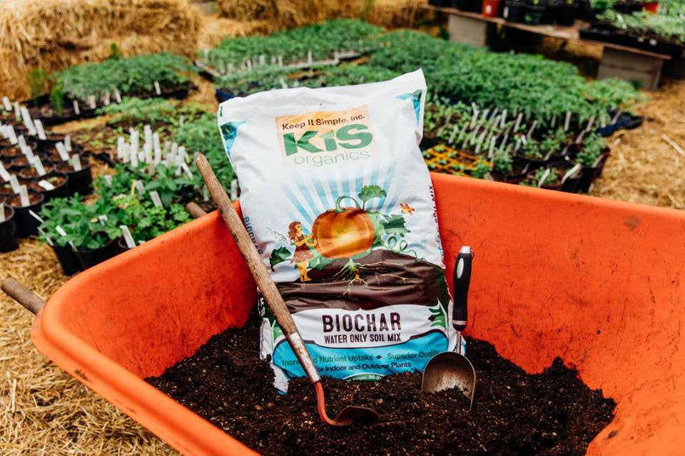 What's In Your Soil?  A Breakdown of KIS Organics Soil Ingredients