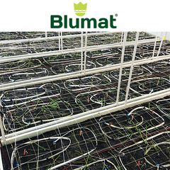 Get a Custom Quote for Blumats for your Grow