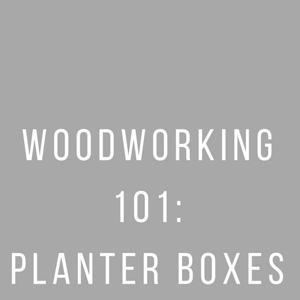 Woodworking 101. March 9th + 16th.
