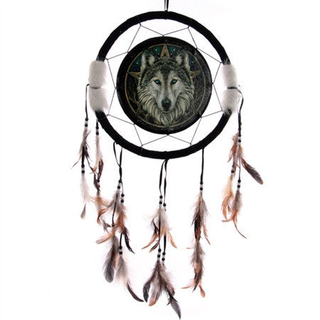 Dream Catchers and Pictures