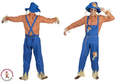 Costumes: Men: Scarecrow Man