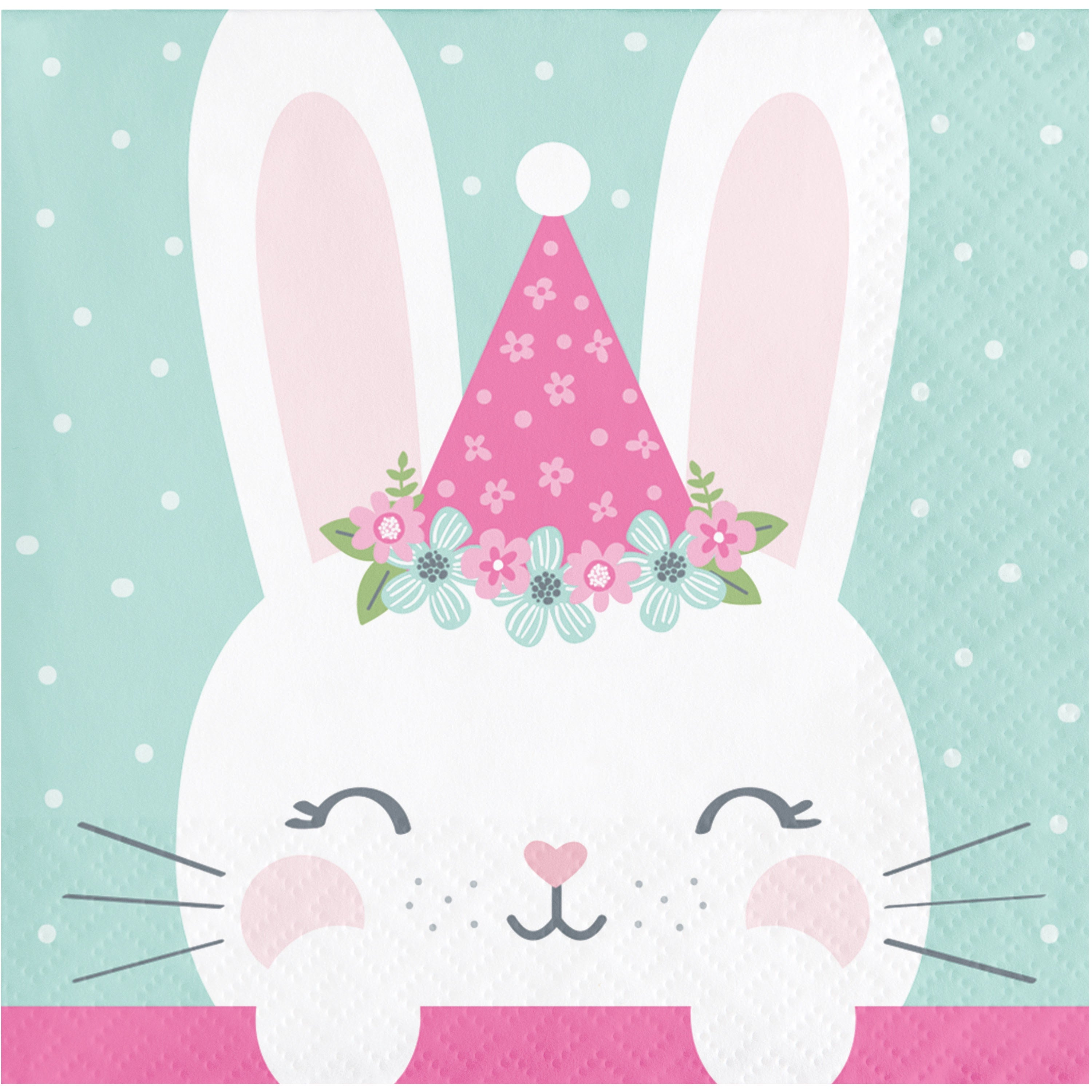 BN 12/16CT 2P 1ST HAT BIRTHDAY BUNNY BKF