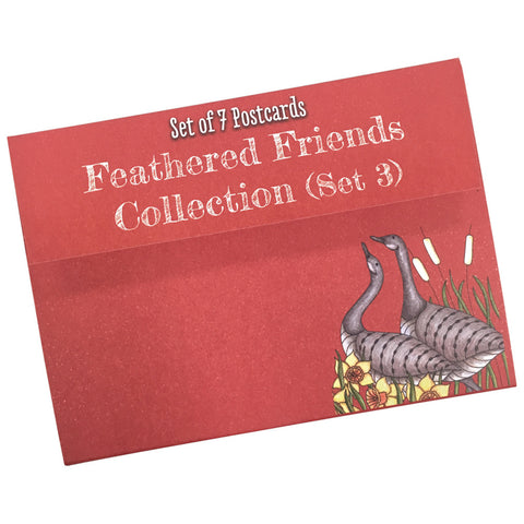 Feathered Friends Colouring Postcards Set 3
