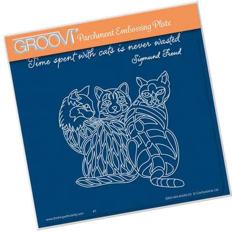 3 Cats Groovi® Plate A5