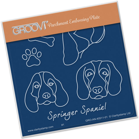Kennel Club - Springer Spaniel Groovi® Baby Plate A6