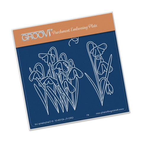 Snowdrops Groovi® Baby Plate A6