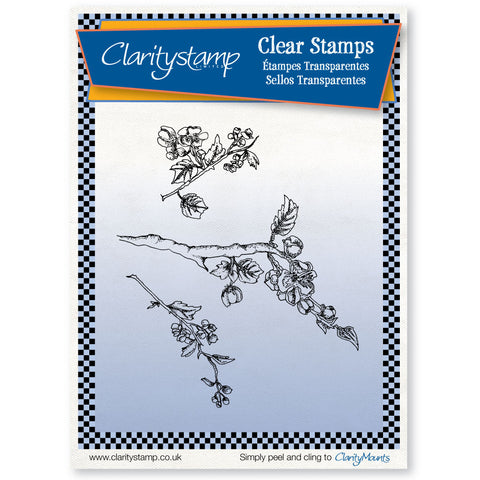 Blossom Branch Stamp Set
