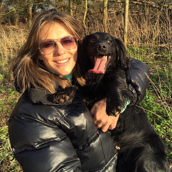 Elizabeth Hurley, mother of 4 dogs