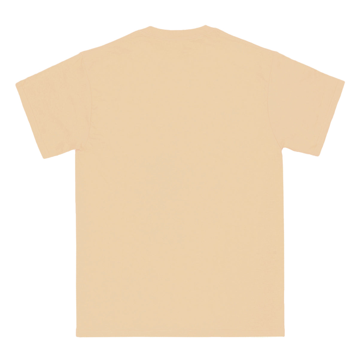 FAMILY & FRIENDS cream tee - RAVE skateboards