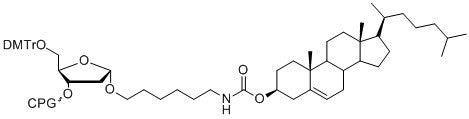 3'-Cholesterol SynBase™ CPG 1000/110
