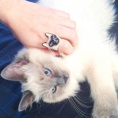 Good After Nine | DAHLIA Siamese Cat Ring - lucylovesneko