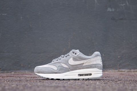 Nike Air Max 1 Premium Cool Grey/ Wolf Grey-White BUzRxOR