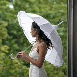 White Susino Occasion Umbrella