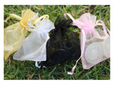 Clean Heels Clear or Black in Sizes Petite, Small or Medium in organza bags