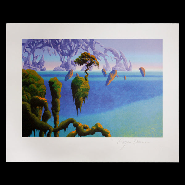 Parrot Island SIGNED Poster (40x51cm)