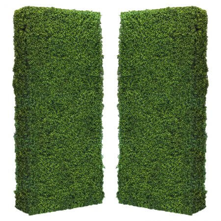 Green Box Hedge