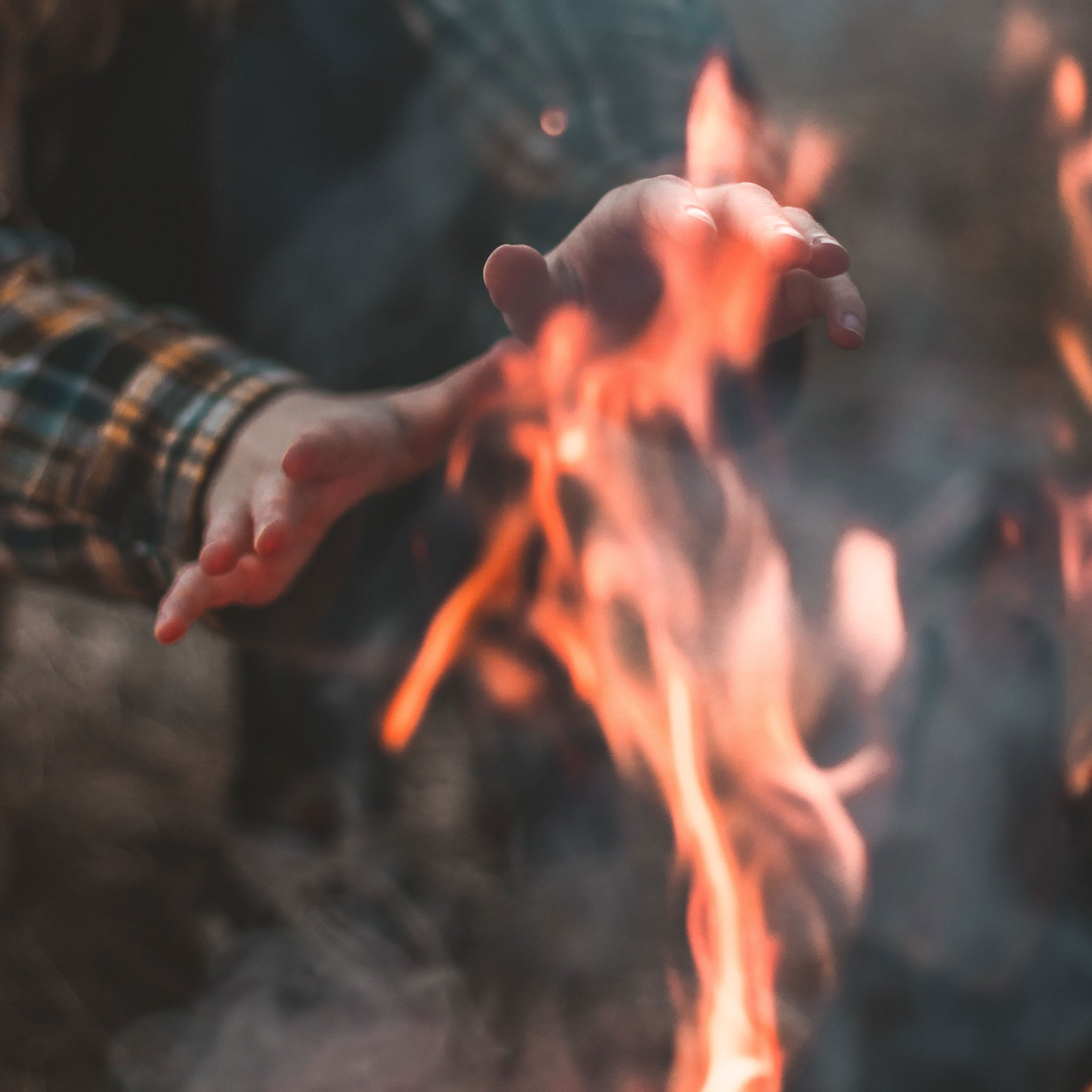 How to build a campfire in the woods