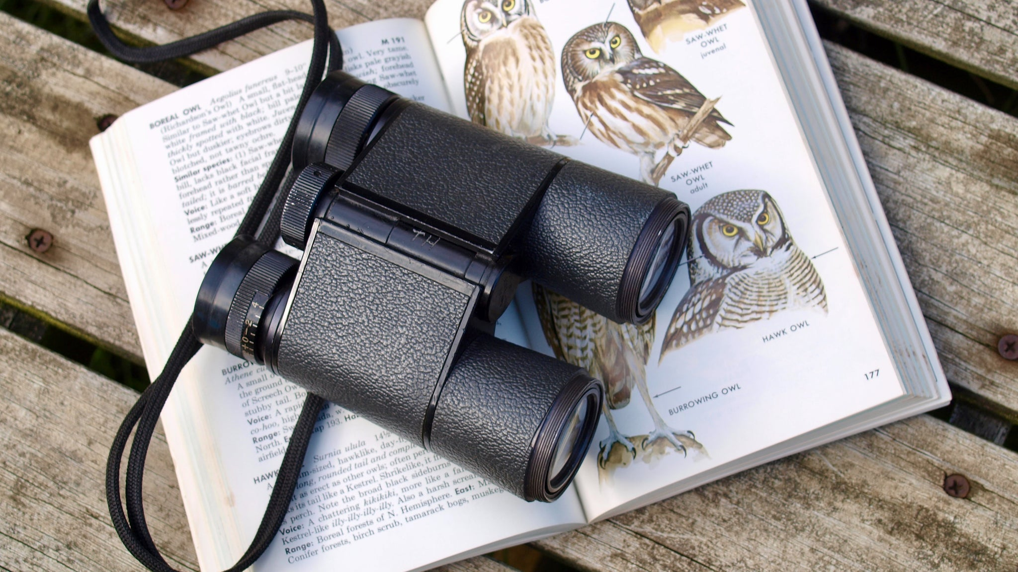 Binoculars resting on a wildlife book showing types of owls