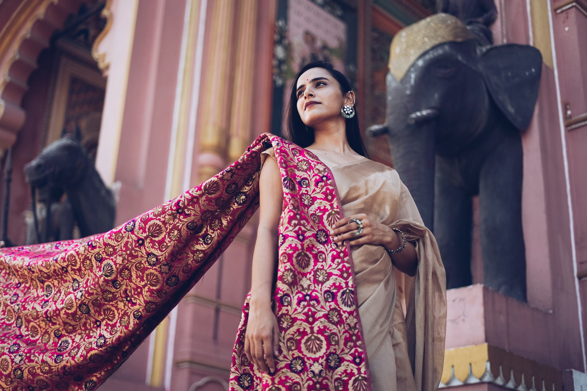 Brocade - Royal Saree