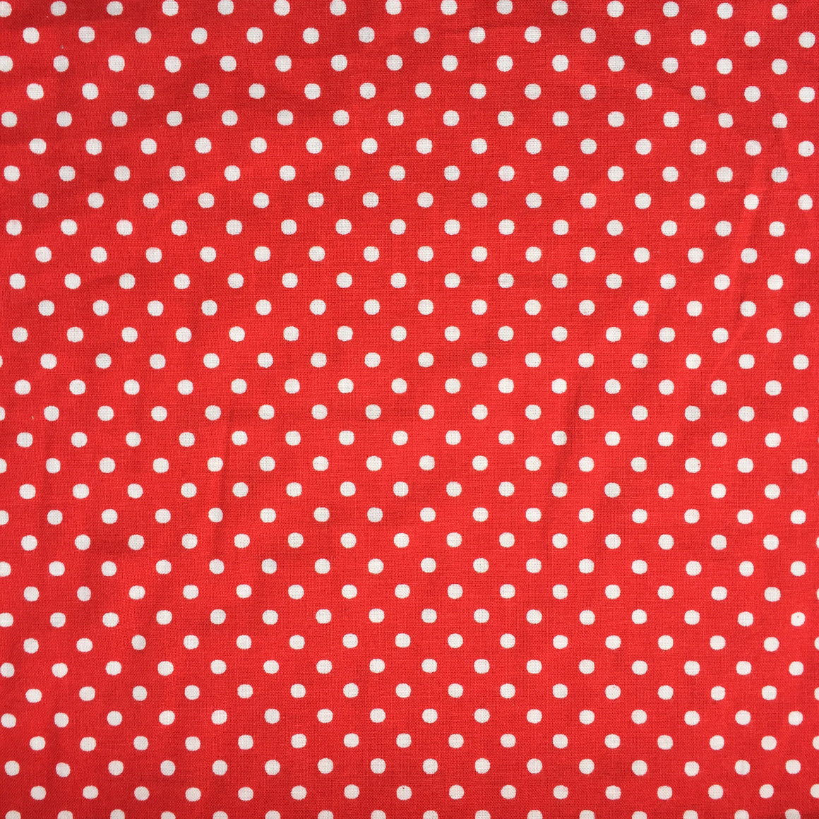 RJR Fabric Crazy for Dots & Stripes - Red Polkadots 8174