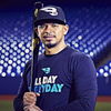 B45 Baseball Yellow Birch Baseball Bat EE1 Pro Select Stock | Eduardo Escobar