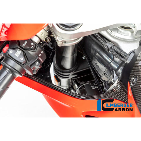 Ilmberger Carbon Air Tube Cover Set for Ducati Panigale V4 V4S Speciale