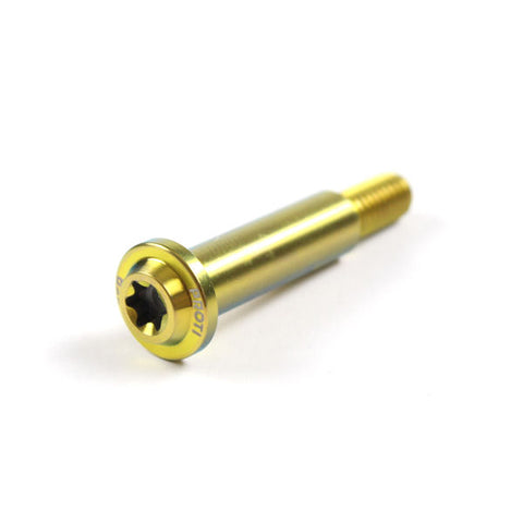 Proti Titanium Pivot Bolt for Brembo RCS 19 - Gold