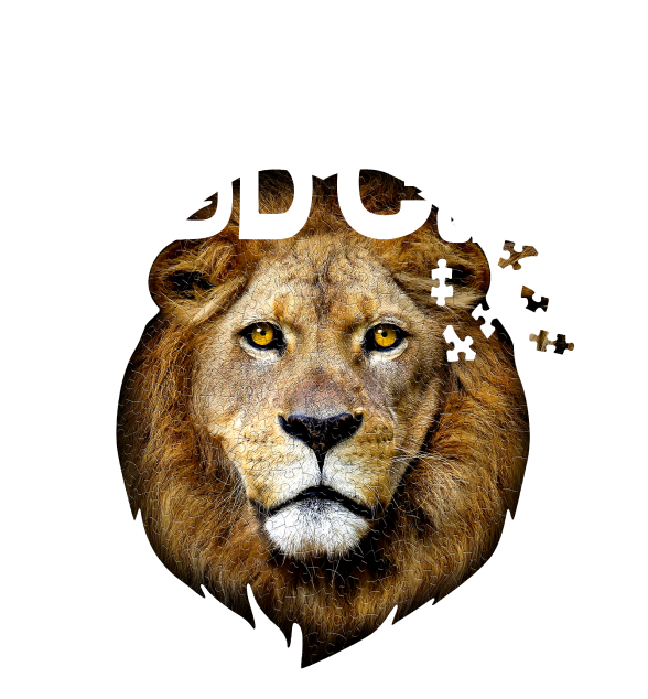 We Are Madd Capp