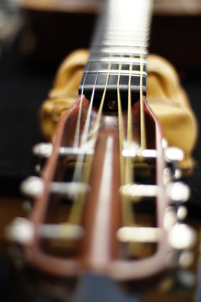 Why El Capitan has a truss rod