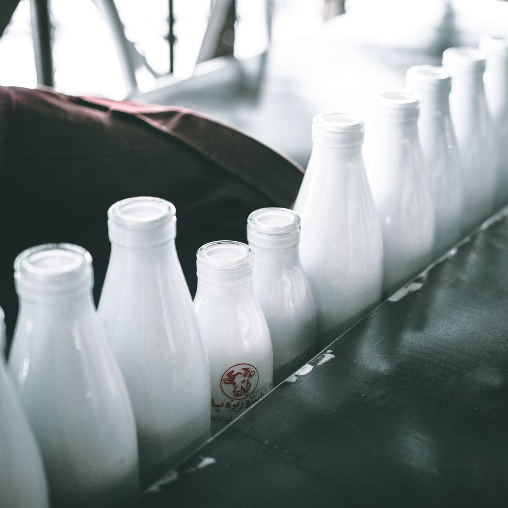 Dairy Products Are Helpful in the Fight Against Osteoporosis