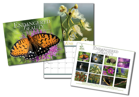 Donate $49 and receive 4 2020 Endangered Beauty Calendars