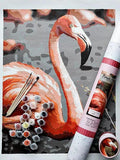 Pink Picasso Paint By Numbers Kit Frannie Flamingo Craft - D & D Collectibles