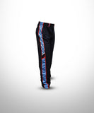 BaseBall Pant with sublimated panels STRS1