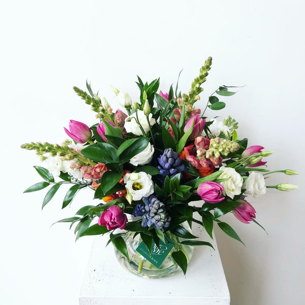 Designer's Choice | Arranged | PICKUP OR DELIVERY