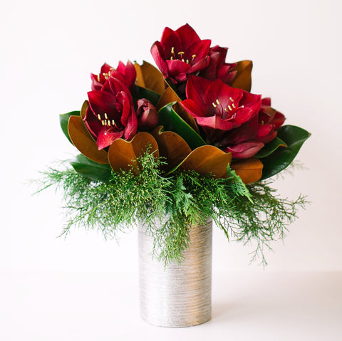 Red Amaryllis | Vase Arrangement