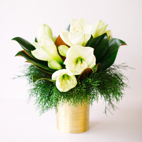 White Amaryllis | Vase Arrangement