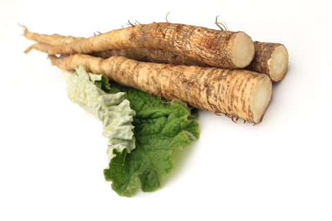 Why Burdock Root Is in Many Famous Herbal Cancer Formulas